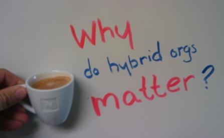 Why do hybrids matter?